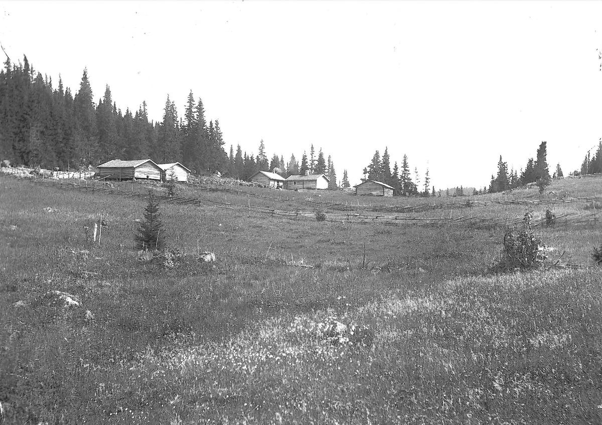 Setervollen med bebyggelse, Holoa seter, Hadeland, Jevnaker, Oppland, 1903.