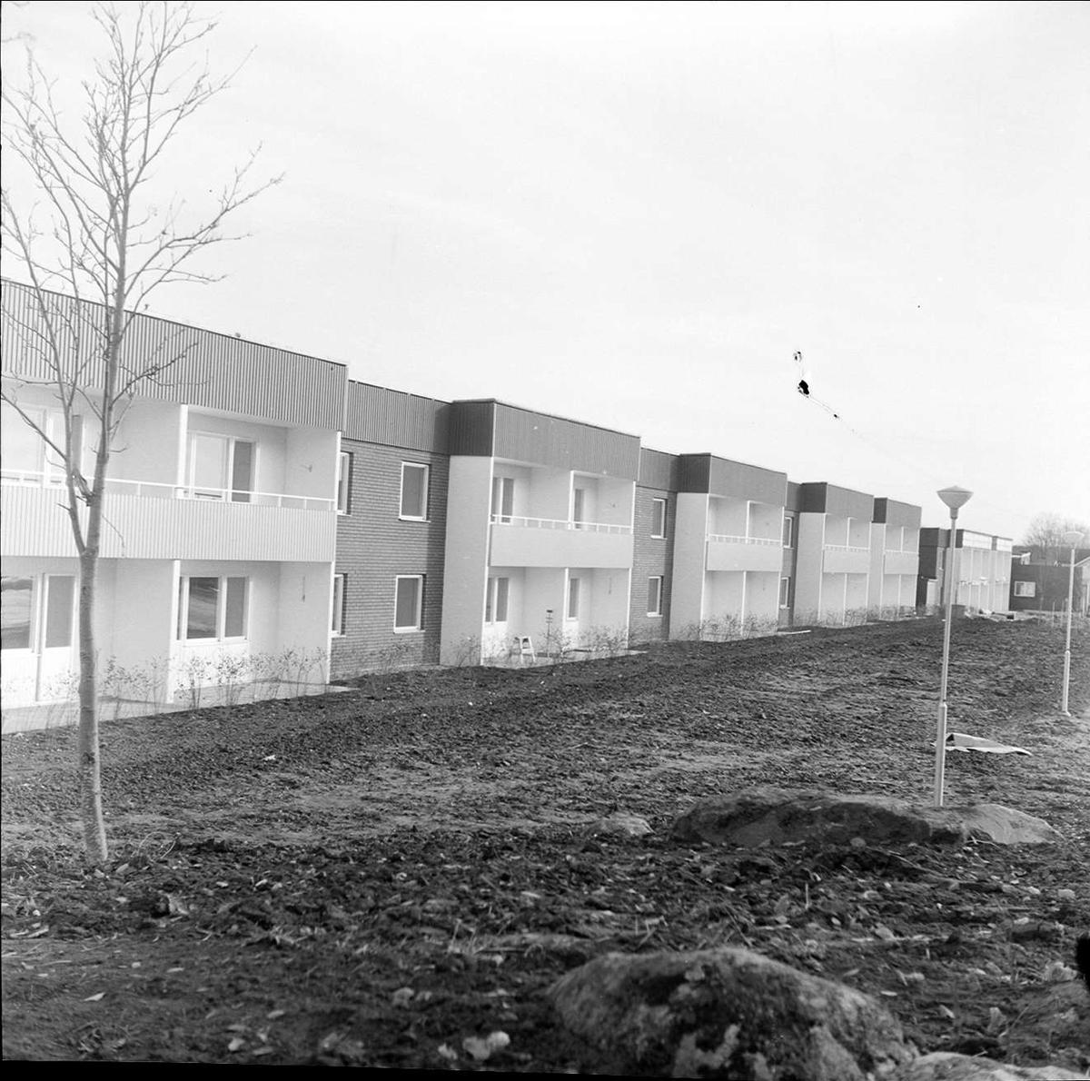 Inflyttning i kvarteret Skölden, Tierp, Uppland oktober 1972