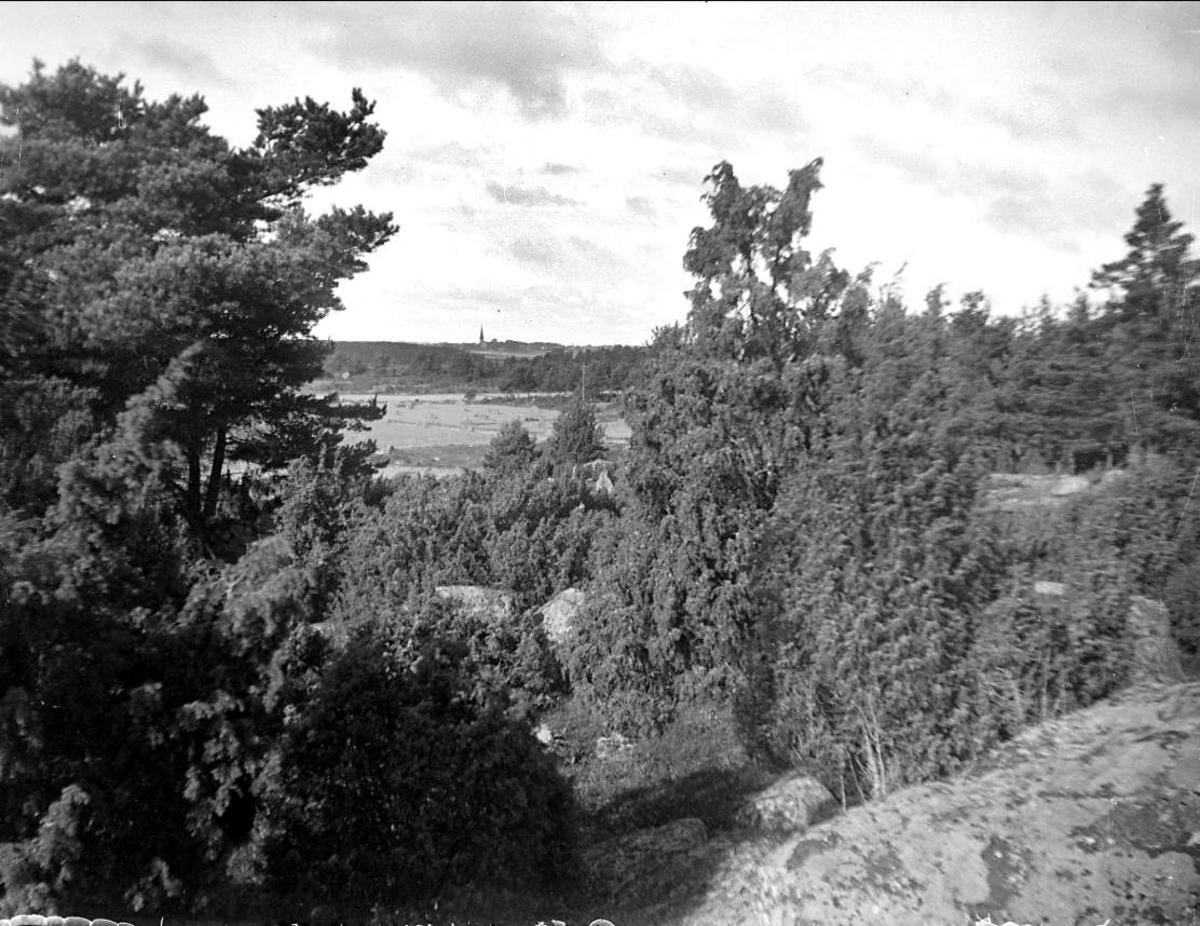 Landskapsvy, eventuellt med Vaksala kyrka i fonden, Uppland 1928