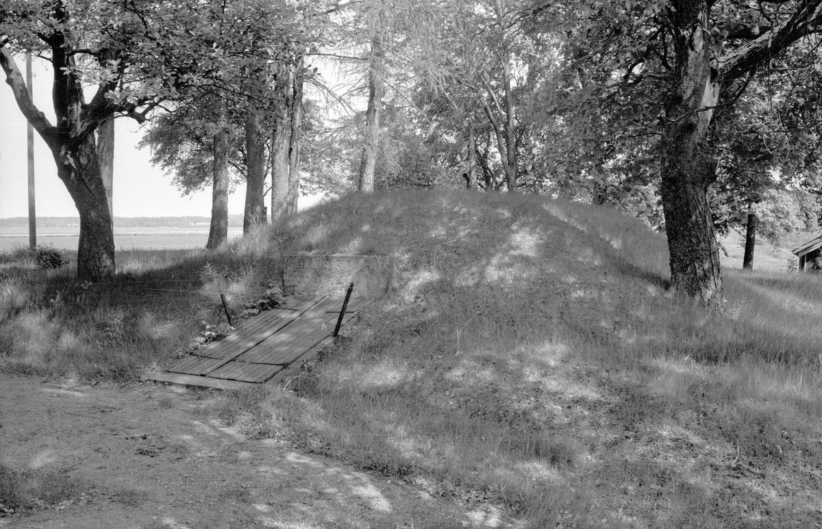 Jordkällare, Lilla Skärna, Fullerö 22:3, Gamla Uppsala socken, Uppland 1977