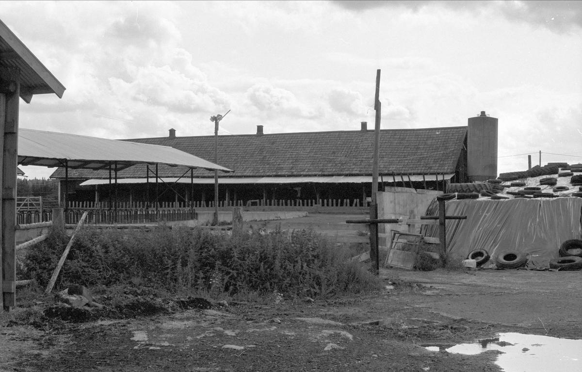 Ladugård, Näset, Rasbo socken, Uppland 1982