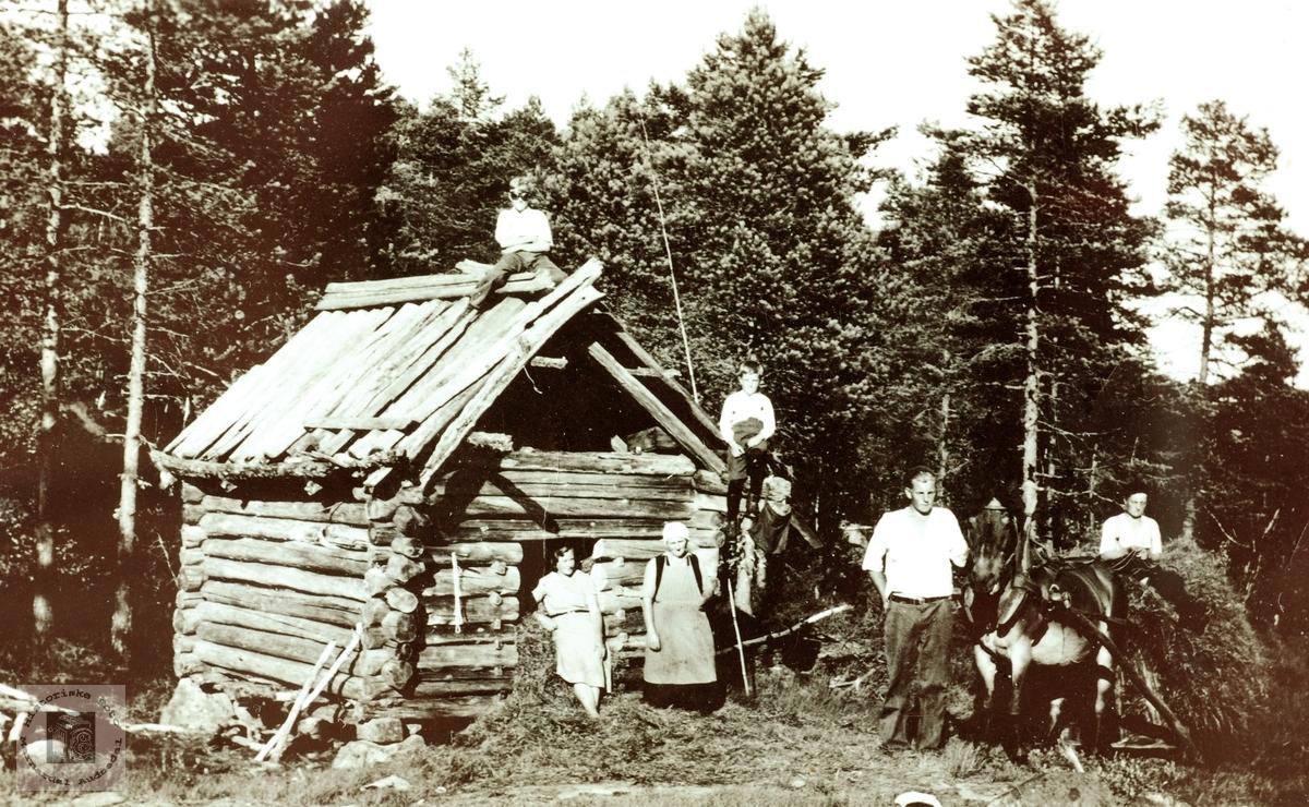 """Høyonn """"På heia"""" Vodden på Sveindal i Grindheim senere Audnedal."""