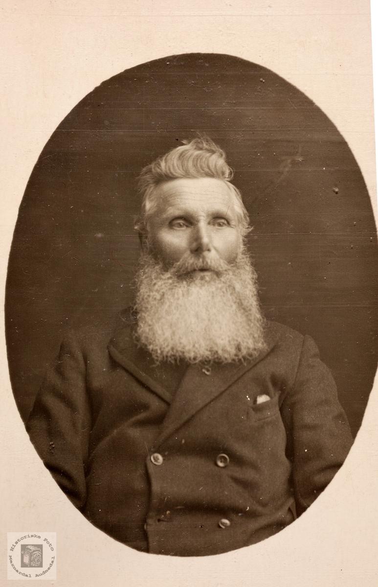Portrett av Ole Hårtveit. Grindheim.