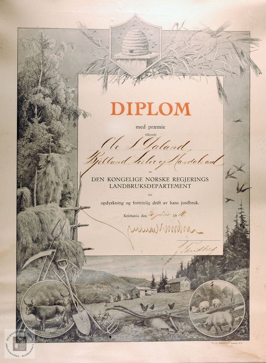 Diplom fra Norske Regjerings Landbruksdepartement til Ole Daland. Bjelland.