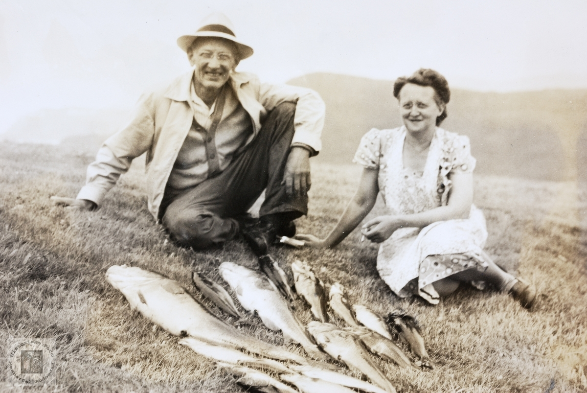 Flott fiskefangst på  Andøya.