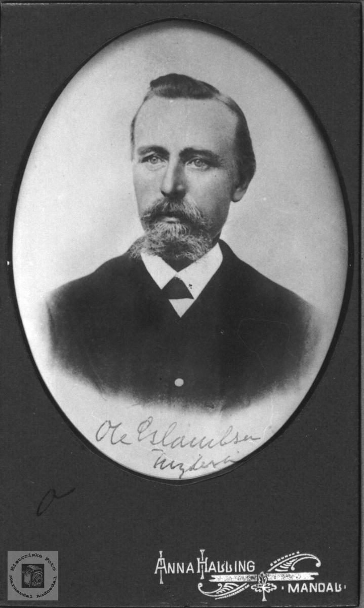 Portrett av Ole Fuglestveit, Øyslebø.