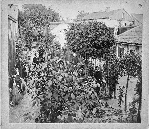 """""""Blomsterkrokens trädgård"""", Uddevalla"""