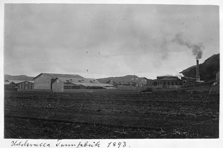 "Text på kortet: ""Uddevalla Tunnfabrik 1893""."