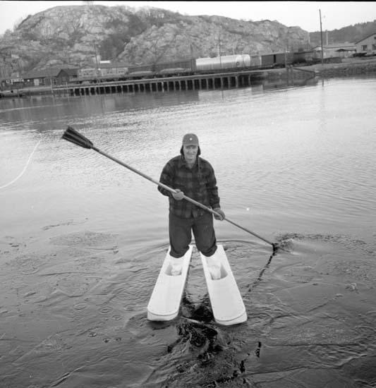 Vattenskidor Gus Erixsen 5 december 1958.