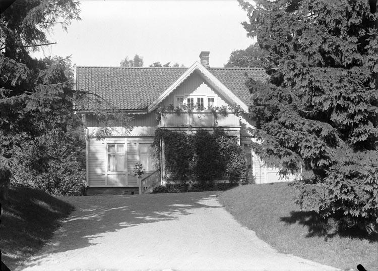 """Enligt fotografens anteckningar: """"1931, 95""""."""