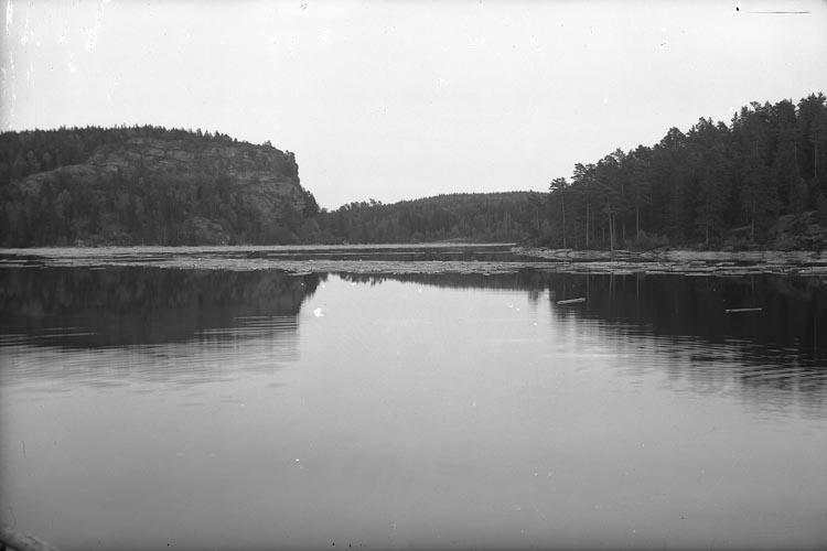 """Enligt fotografens noteringar: """"1950, Björids Damm, Vassbotten."""""""