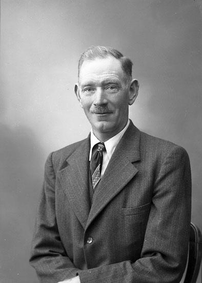 "Enligt fotografens journal nr 7 1944-1950: ""Alfredsson, Herr Anders Nösnäs Stenungsund""."