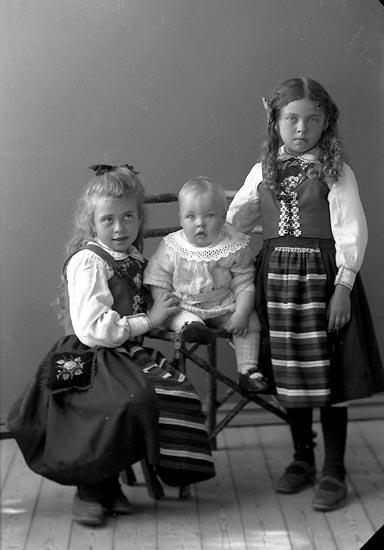 """Enligt fotografens journal nr 2 1909-1915: """"Johansson, Anna Höviksnäs 3 barn""""."""