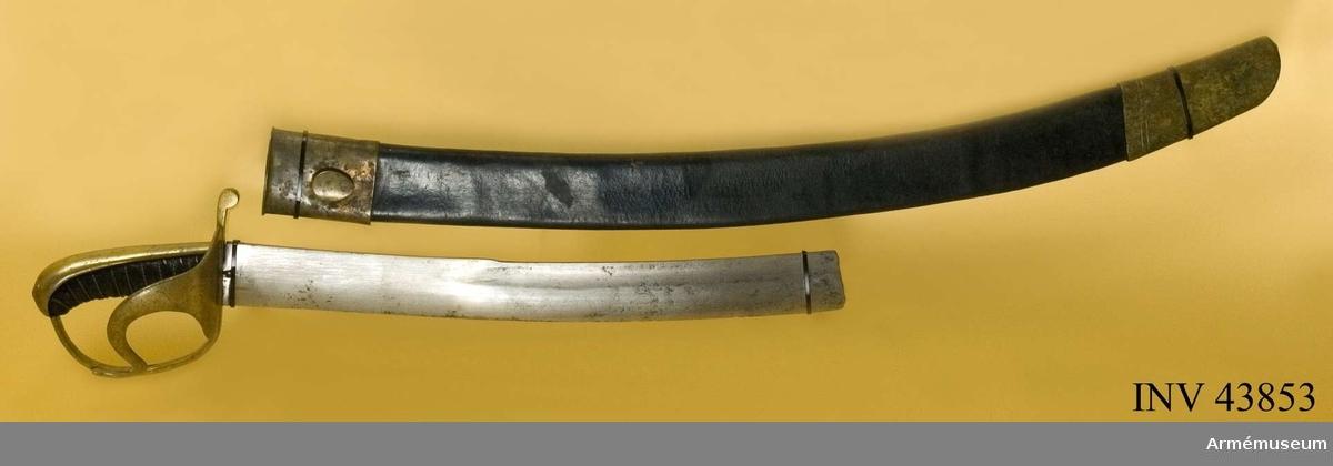 Grupp D II Baljan är av svart läder och har släpsko och koppelknapp med  munbleck - allt av mässing. Koppelknappen är långdraget oval, nära nog äggliknande.   Samhörande nummer är AM.43852-3