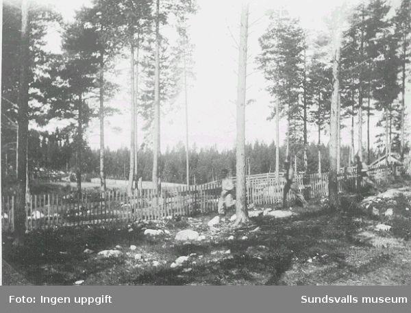 """Norskt polistruppsläger, Bataljon 3. """"Trening i löipa på Baggböle 1944.""""  (Text  i  fotoalbum. Ägare Eilif Johansen, Sellebakk.)"""