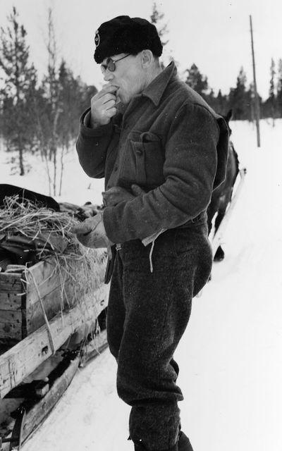 Åkande lantbrevbäraren på linjen Långudden-Västerfjäll (45,5 km), Per Andersson tar sig en pris snus.