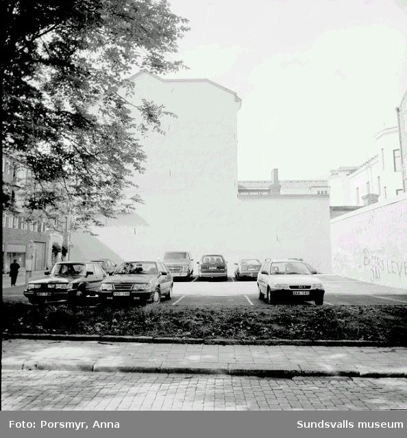 SuM-foto017231