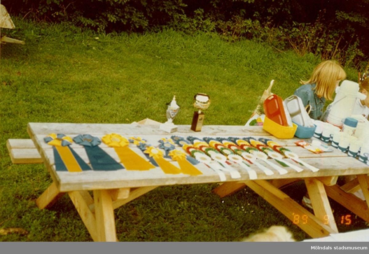 Medaljer och pokaler på ett bord i parken. Vid sidan om står ett annat uppdukat bord med fika. Detta i samband med en kaninkapptävling.