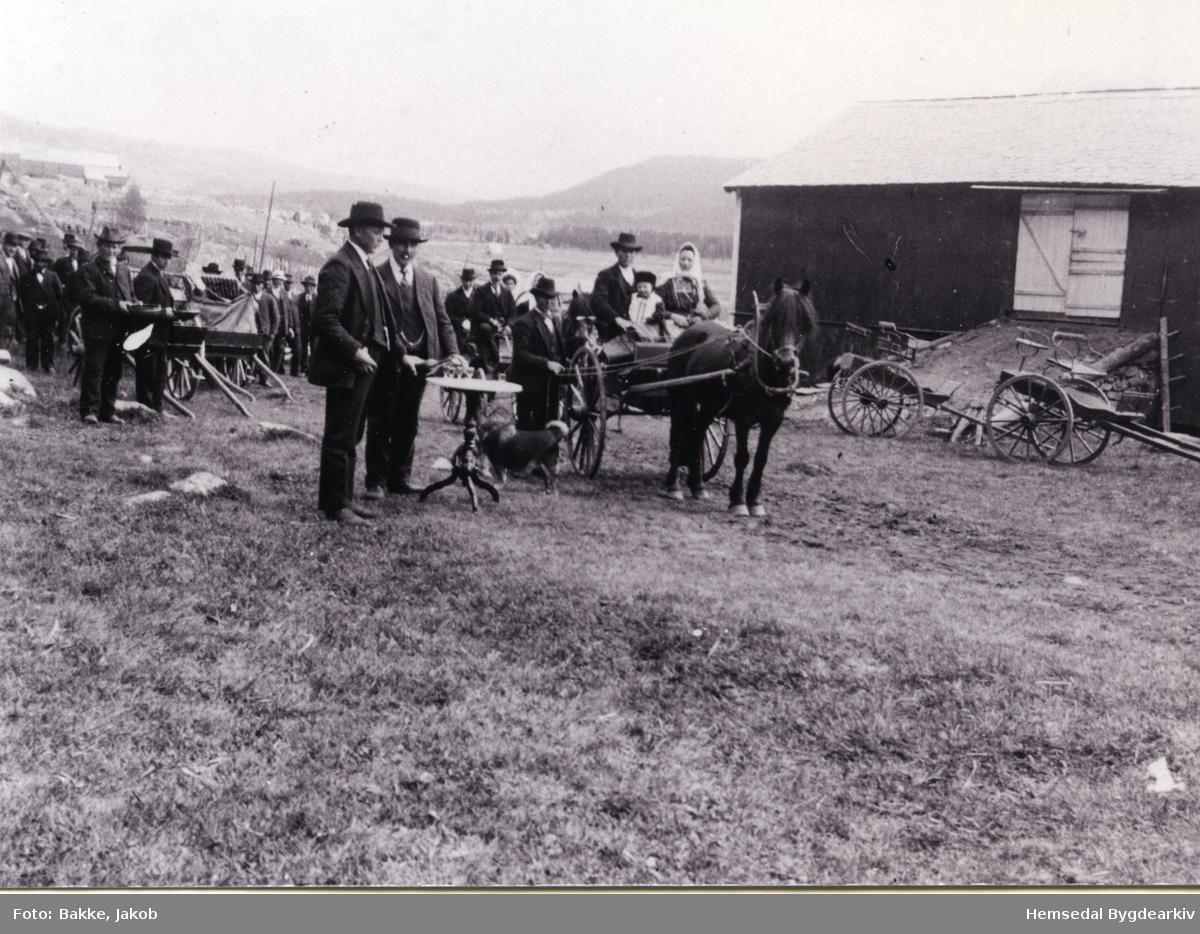 Frå bryllaupet til Birgit og Ola Embre. Til venstre står to karar med ølbollar  I fjørkjerra sit Guri og Ola Brandvoll. Fjørkjerrer. Hest Biletet er teke i 1916.
