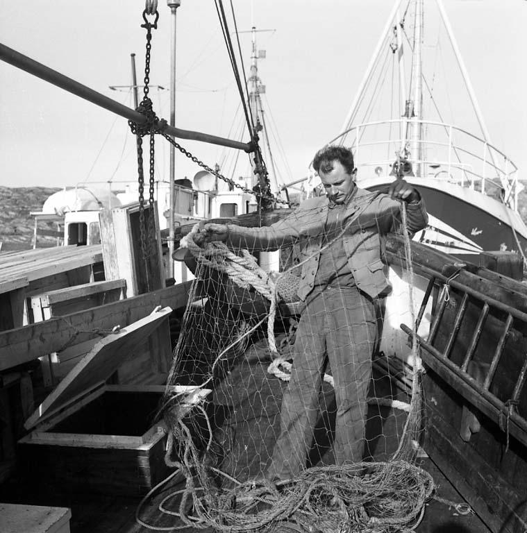 Rönnängs varv 1961