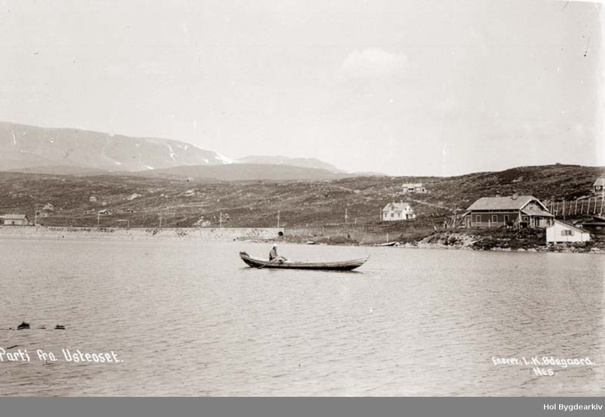 Landskap, Ustaoset, robåt, Bergensbanen, Hyttegrend, kafe