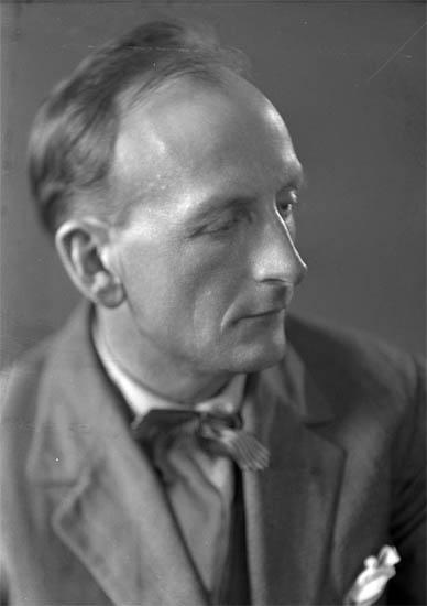 """Text till bilden: """"Emil Sjögren""""."""
