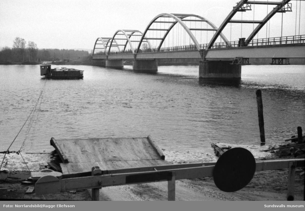Skeppsholmsbron i Indalsälvsdeltat är snart invigningsklar. Nu går de sista turerna med färjan.