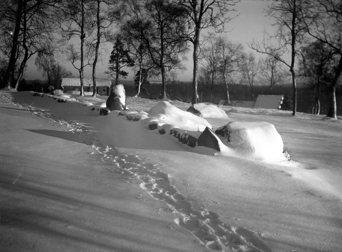 Fotspår syns i snön utmed stengärdesgården. i Den trädbevuxna backen ligger några hus.