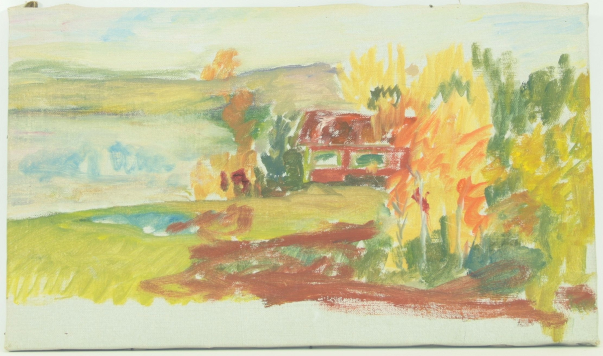 Motivet viser en naturscene. En hytte ligger til høyre i bildet, med skog rundt, og et kratt med trær og busker foran seg. Til venstre i bildet kan man se et vann og fjellvidder i bakgrunnen.