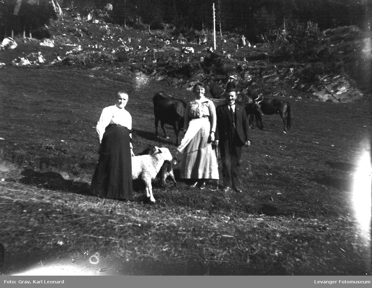Familie ute med sau, hund to kyr og to hester