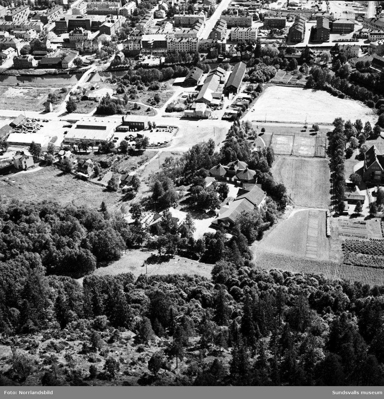 Flygfoto över Västermalm och Selångersån, taget norrifrån med Folkets park centralt i bilden.