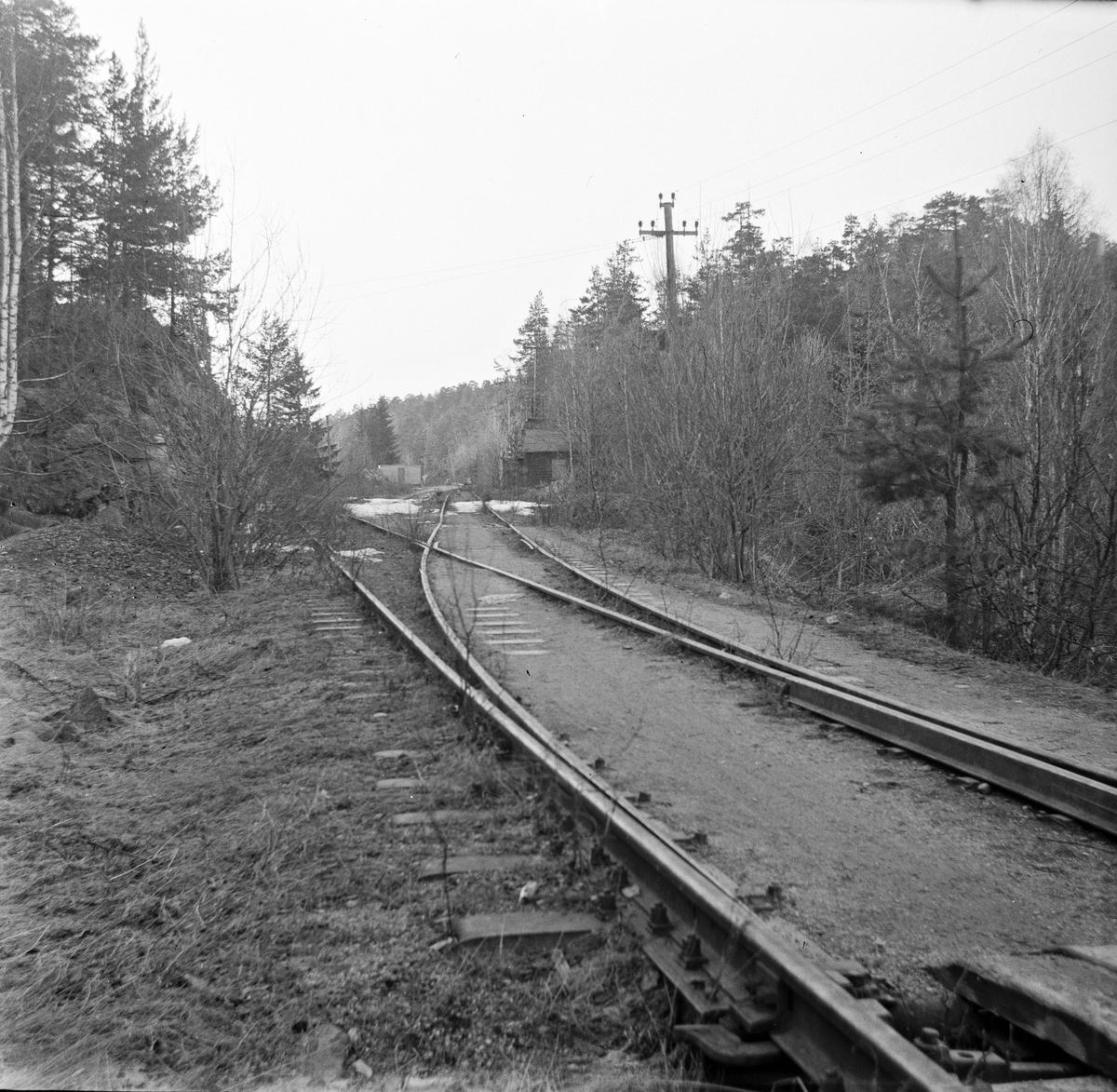 Fra nedlagt trase på Østfoldbanen ved Holmlia. Banen ble lagt om via Hauketo i 1925 i forbindelse med at Ljansviadukten ble tatt ut av bruk, men deler av den gamle traseen ble beholdt som sidespor.