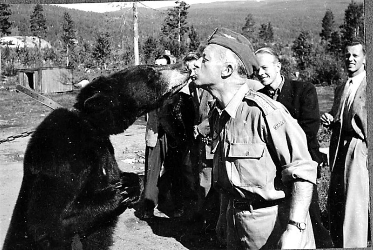 """Gruppeportrett, flere personer, i forgrunnen en militær i militæruniform som """"snuser"""" på en levende bjørn."""