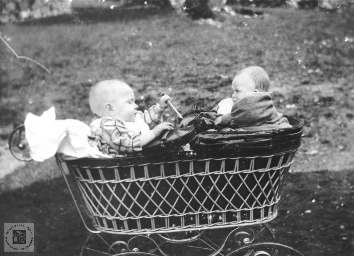 Barn i Barnevogn. Anders Homme og Asborg Oland.
