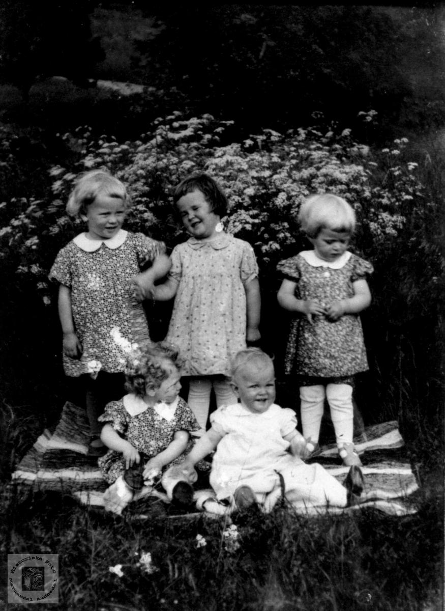 Barnegruppe