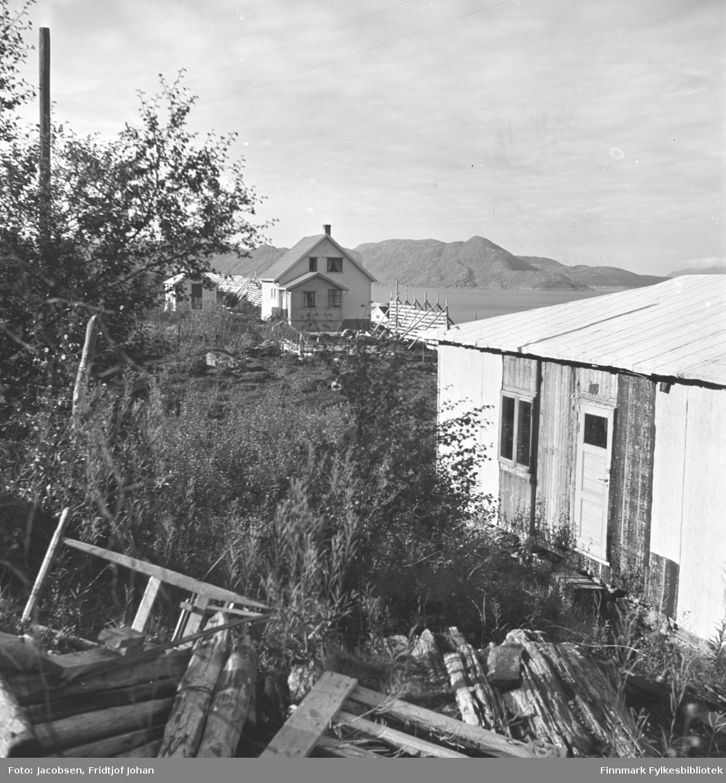 Fra familien Nakkens eiendom i Rypefjord. Noe materialer og skrot ligger på bakken nederst på bildet. Det er ganske mye busker og trær på området og en stolpe står helt til venstre på bildet. Fridtjof og Aase Jacobsens hytte i forgrunnen til høyre. Huset lengre bort på området, med en snøskjerm ved siden av, tilhørte lærerinne Anna Andersen. Fjellet i bakgrunnen er Seiland.