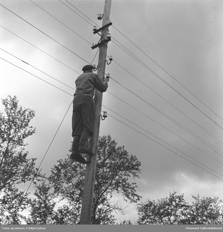 En mann med stolpesko står og monterer telefonlinjer i en telefonstolpe- Mannen bærer mørke klær, har stolpesko på føttene og på hodet har han en mørk skyggelue. En del løvtrær ses nederst i bildet.