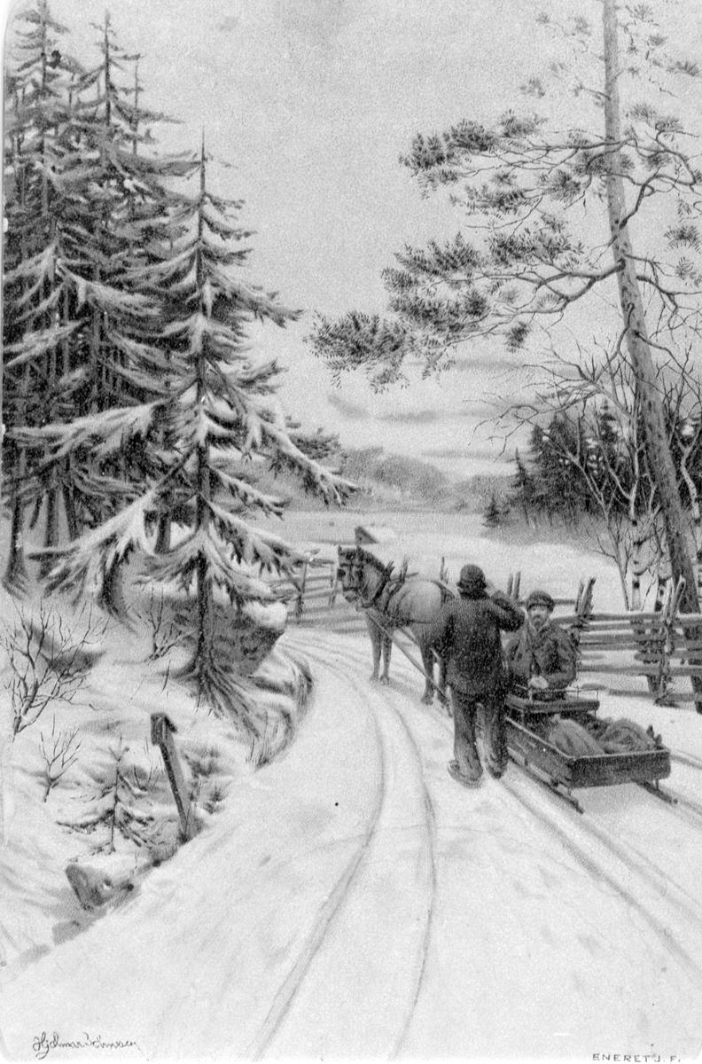 POSTKORT. HEST, SLEDE, hestekjøretøy, vinter. Hjalmar Johnsen.