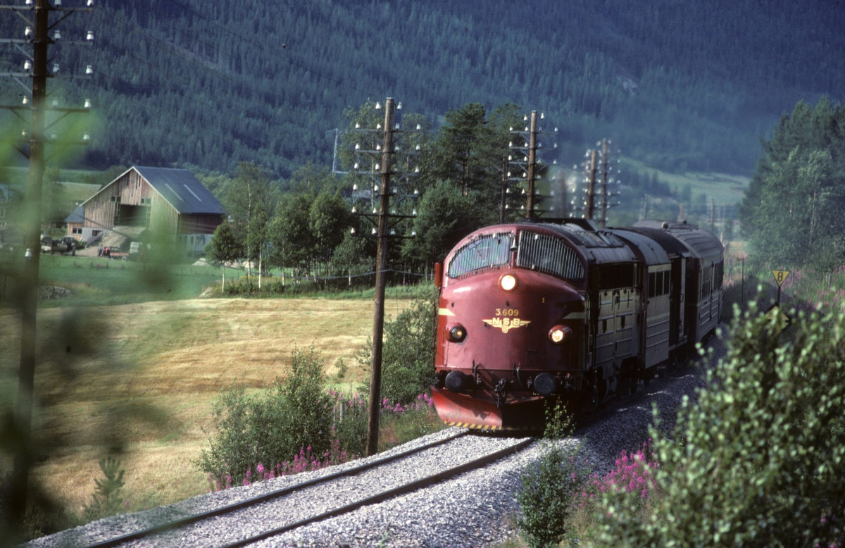 Rørosbanens dagtog Trondheim - Oslo, Hurtigtog 302, sør for Alvdal. NSB dieselelektrisk lokomotiv Di 3 609. Sporet har nylig fått pukk-ballast.