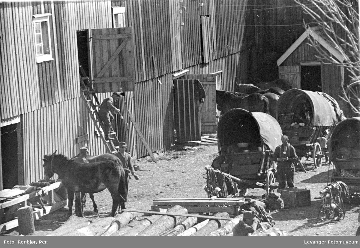 Hest, tyske soldater  og kjerre fra en bakgård i Levanger.