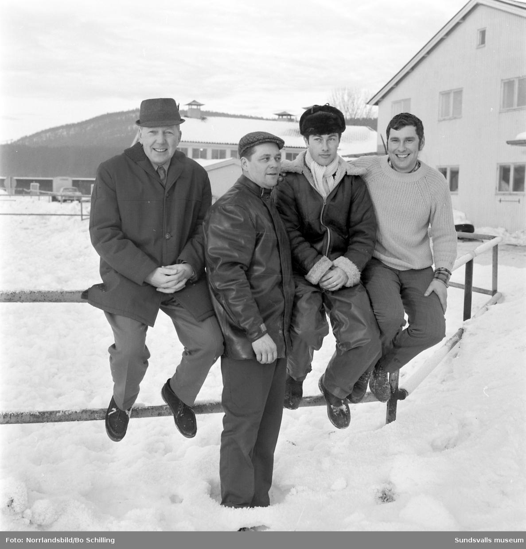 Fyra proffskuskar på Bergsåkerstravet, fotograferade för Expressen. Från vänster; Åke Bäckström, Agge Engblom, Göran och Hans-Erik Skoglund.