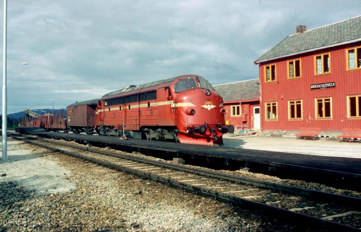 Underveisgodstog 5771 Trondheim - Majavatn i Brekkvasselv med NSB dieselelektrisk lokomotiv Di 3 603 (NOHAB 1957). I Brekkvasselv ble det skiftet ut vogner til Skorovatn gruver.