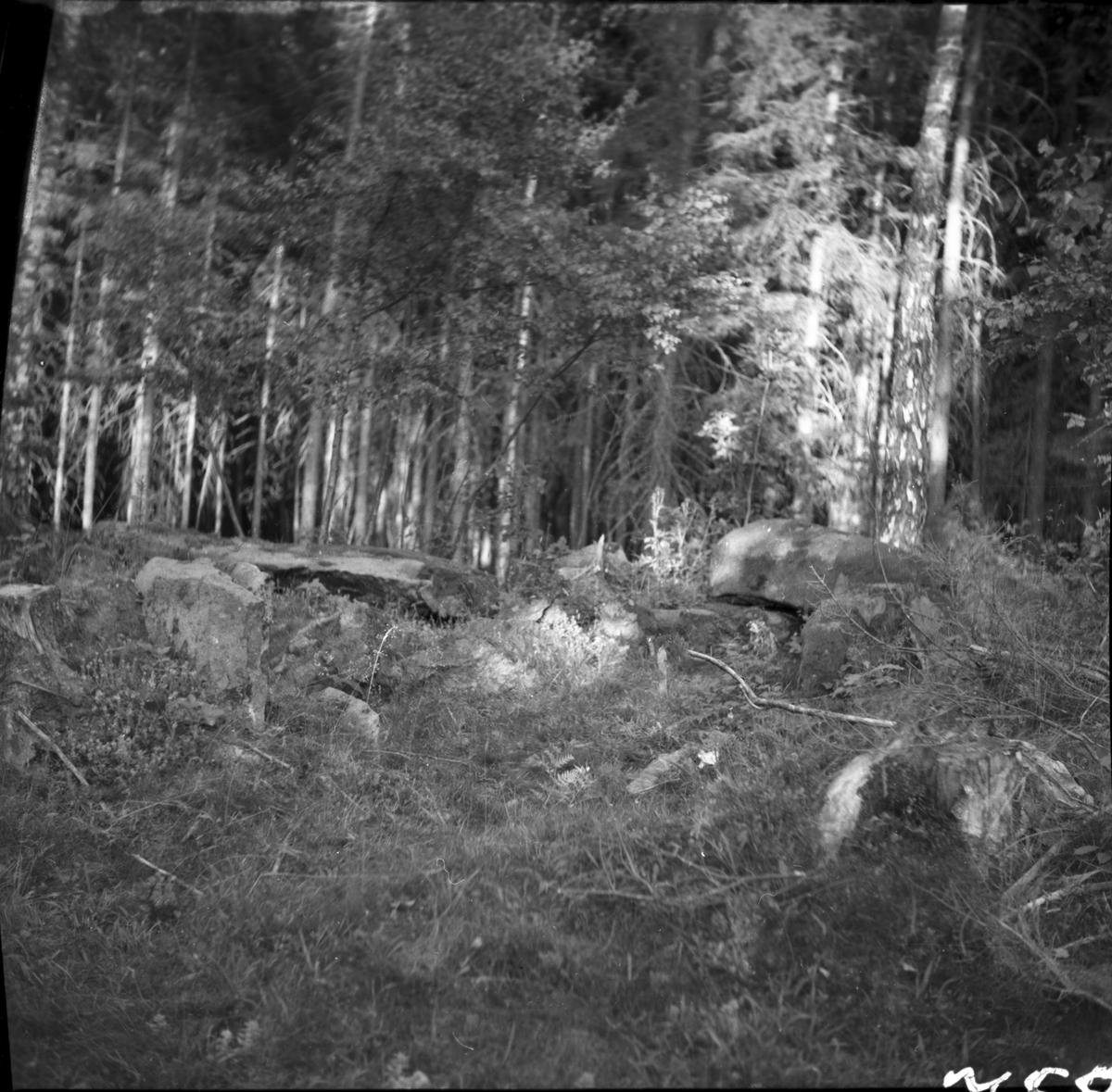 Hällkistan från norr  b  norra del från väster  c  från nordväst  Ånimskog