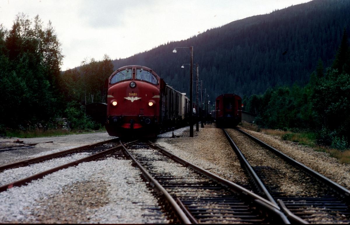 NSB godstog med dieselelektrisk lokomotiv Di 3 620  krysser sørgående dagtog 452 i Lassemoen.