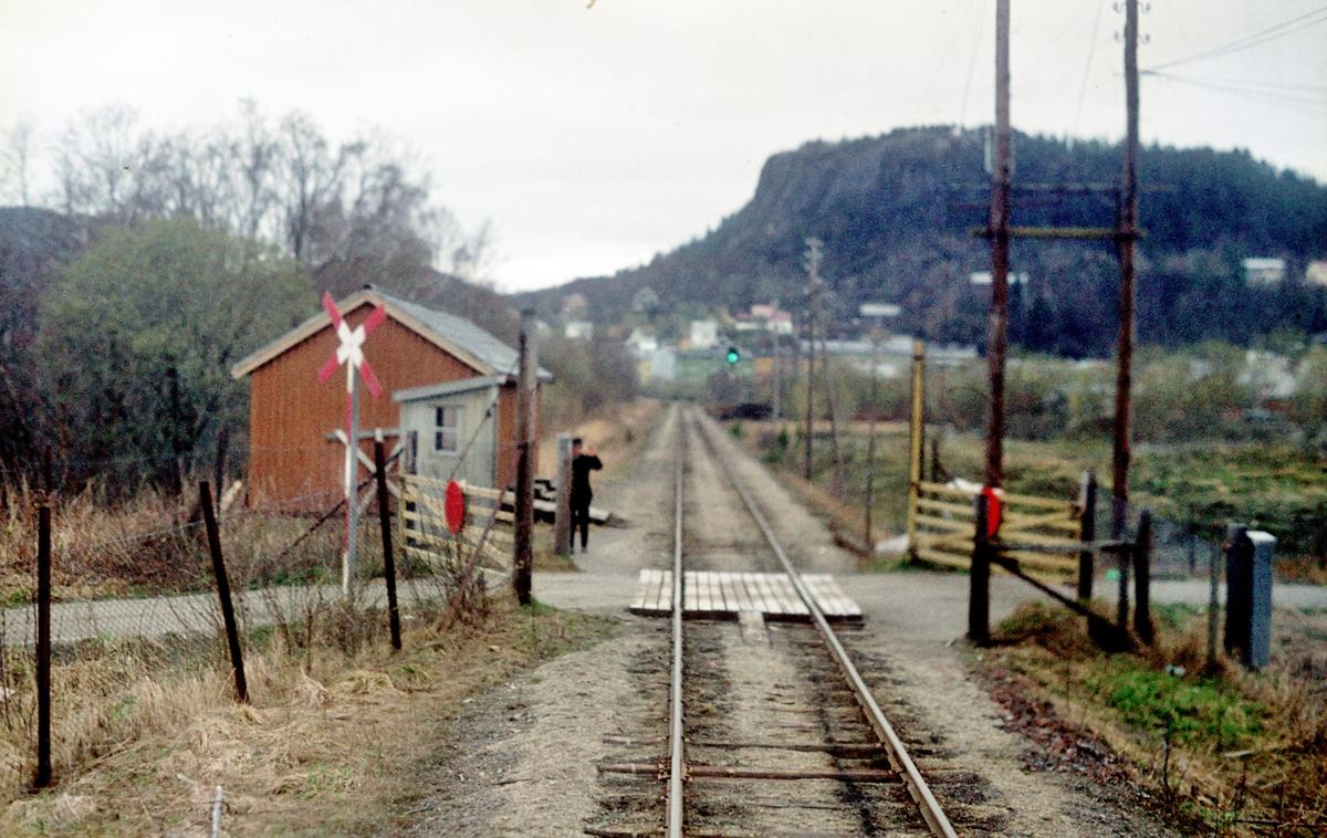 Grindvokter i tjeneste ved planovergang, Namsoslinjen. I bakgrunnen sees innkjørsignalet til Namsos stasjon. Grindene stengte vekselvis jernbane og vei.