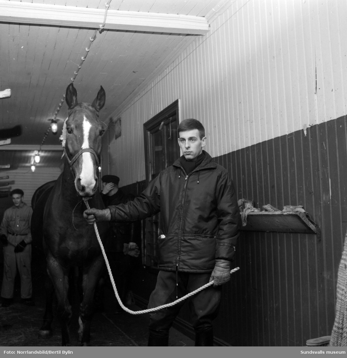 Nu lämnar polishästarna stallet. Den ridande polisen i Sundsvall läggs ned efter nära 32 år och de åtta kvarvarande hästarna lastas för transport söderut från stallet på Östra Långgatan, på tomten där OK numera ligger (2015). En sorglig dag för poliserna och stallpersonalen.