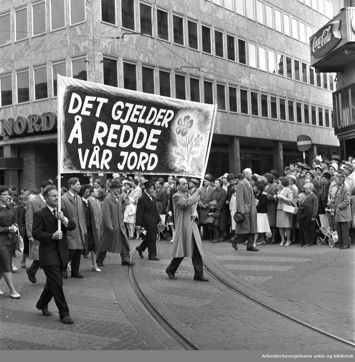 1. mai 1961 i Oslo.Demonstrasjonstoget på Karl Johans gate..Parole: Det gjelder å redde vår jord..