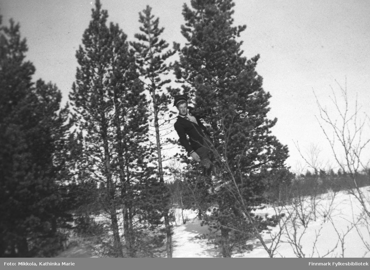 Andreas Mikkola klatrer i et furutre i Pakanajoki