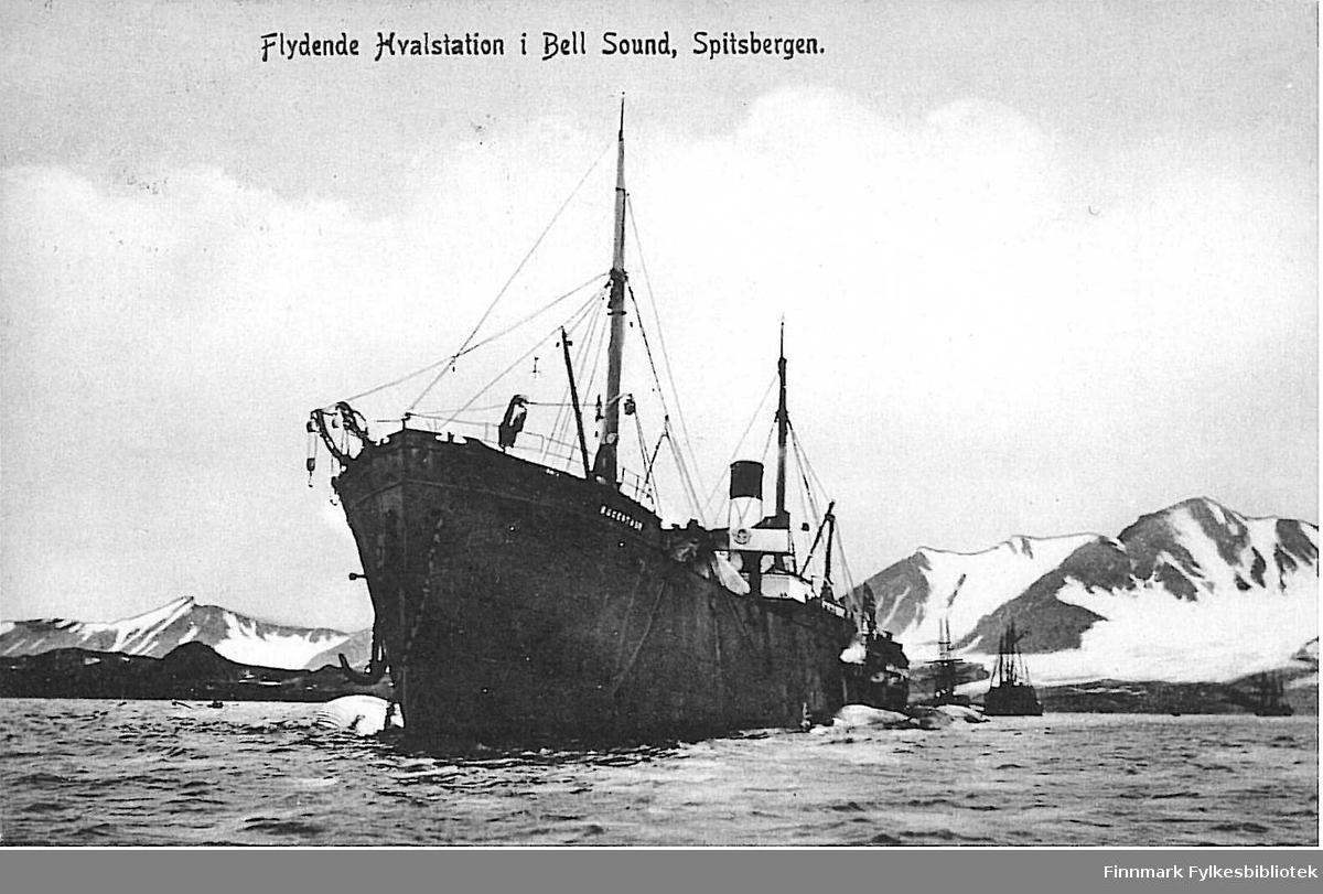 Postkort med motiv av en flytende hvalstasjon i Bell-sundet på Spitsbergen. Kortet er en julehilsen til Arthur Buck på Hasvik, sendt fra Hammerfest i desember 1907.