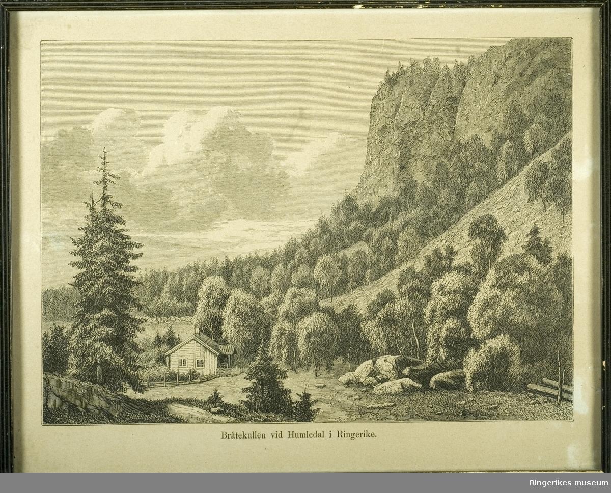Bilde i glass og ramme. Under bildet står det Bråtekullen vid Humledal i Ringerike. Nederst i venstre bildekant står signaturen A. Heimburger. Bildet er i svart/hvitt og måler 29 X 24 cm.